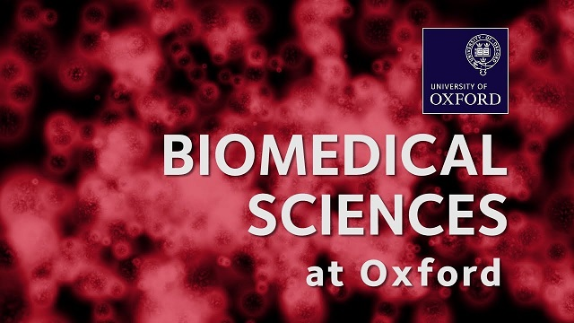 career counsellor and higher education adviser - biomedical biotechnology