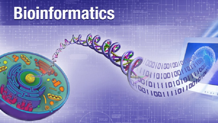 Major Domains & Applications of Biotechnology