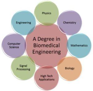 Biotechnology vs Biomedical Science vs Biomedical Engineering (Bioengineering)