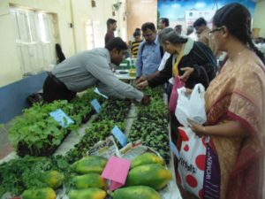 Organic Food & Beverage Market in India