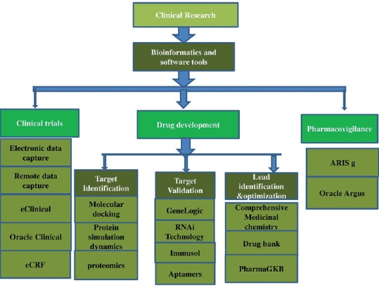 Applications of Bioinformatics in Personalized Medicine