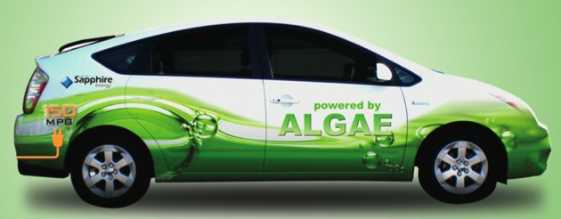 Biofuels and Electric Cars
