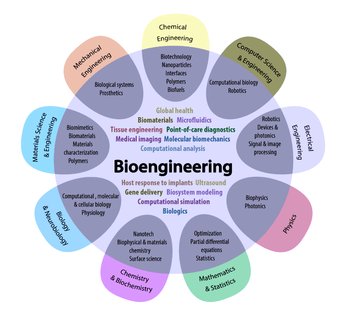 Biomedical and Tissue Engineering Applications